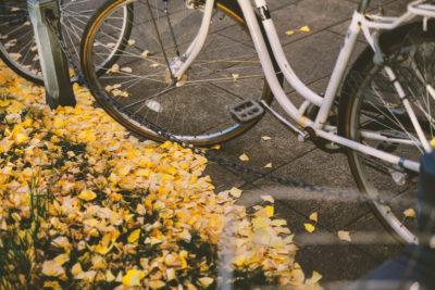 自転車と落ち葉